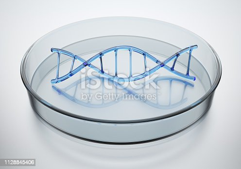 Structure of DNA in a Petri dish