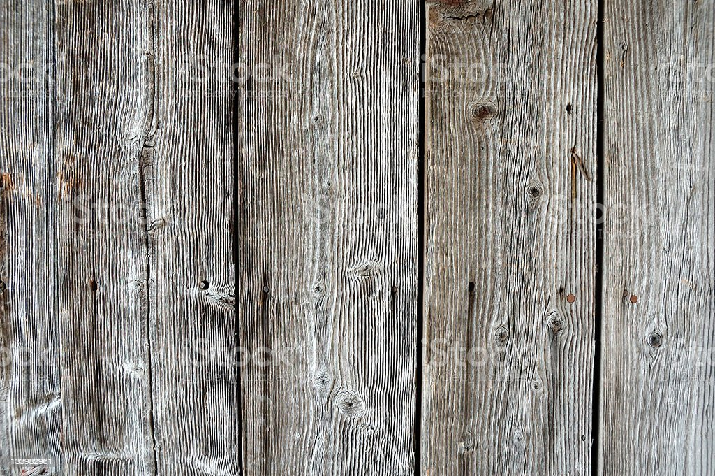 Structure of the old wood with knots royalty-free stock photo