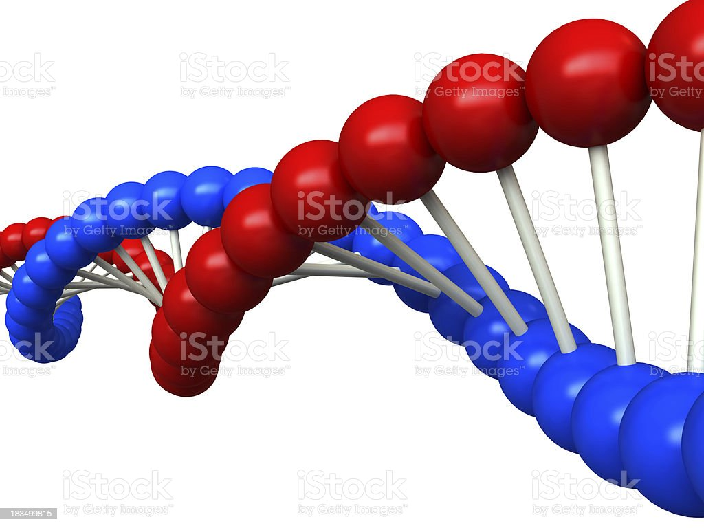 DNA structure royalty-free stock photo