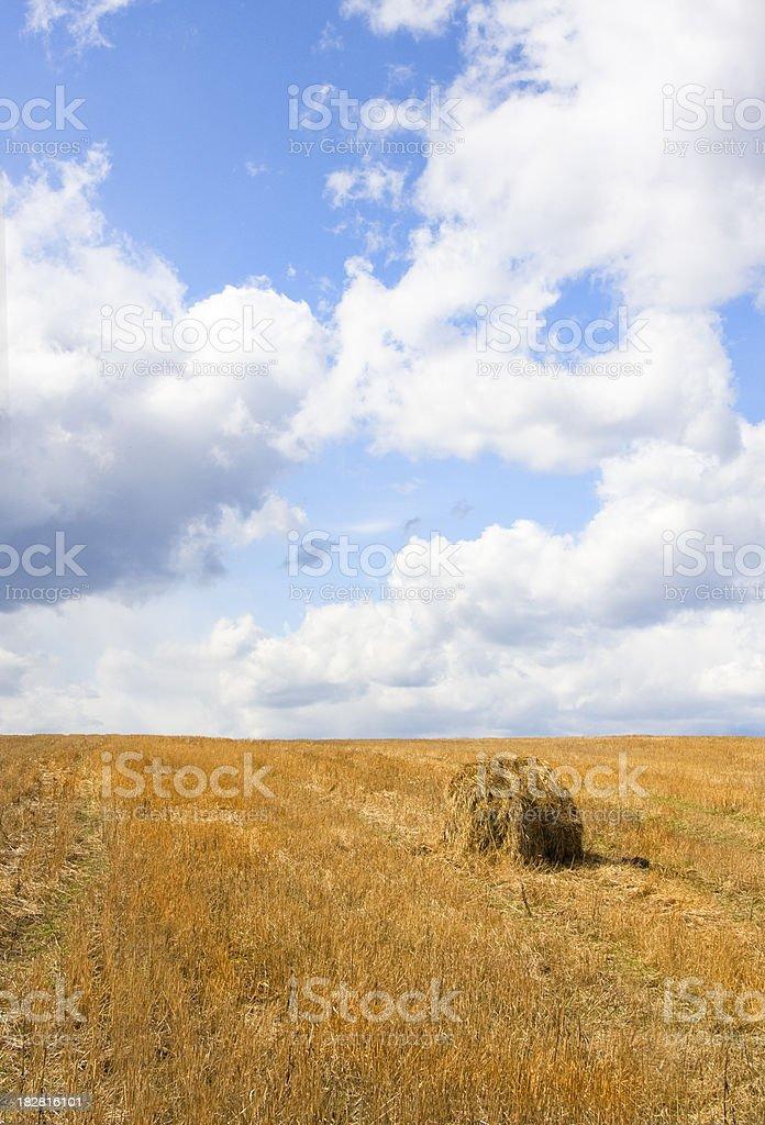 Stubble field with forgotten haystack stock photo