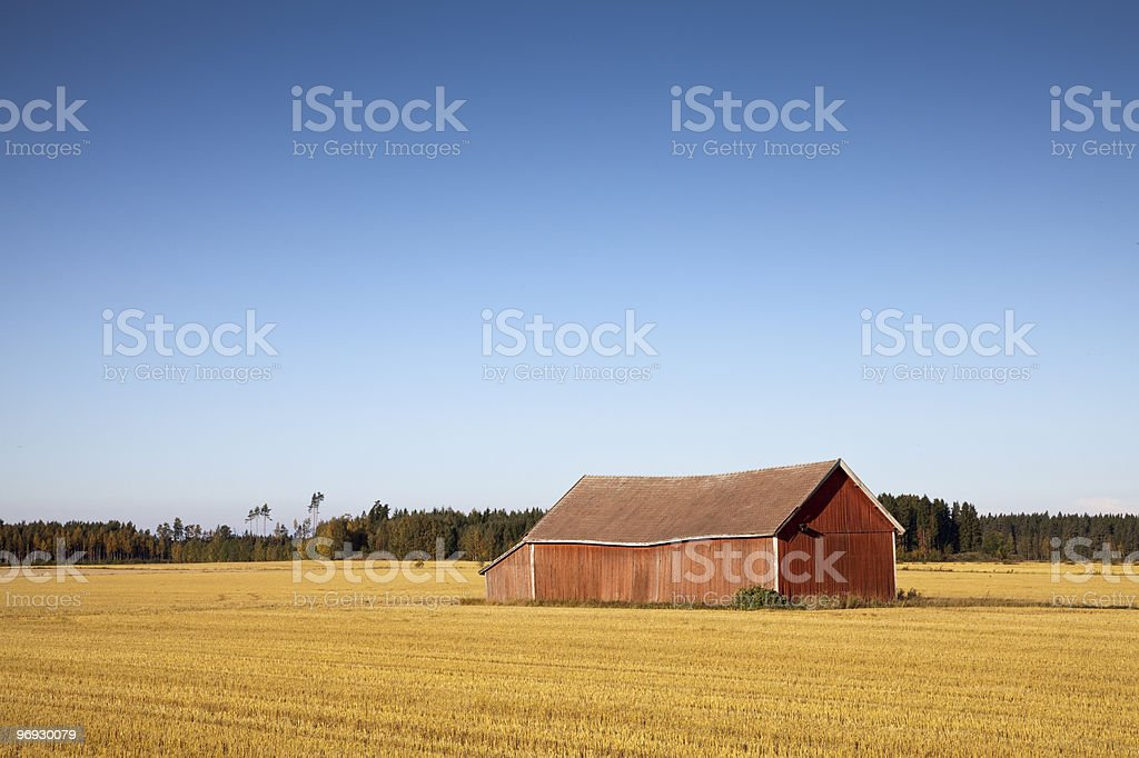 Stubble field with wooden red barn royalty-free stock photo