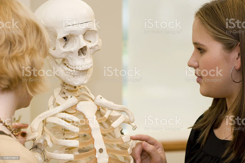 Student and Skeleton royalty-free stock photo
