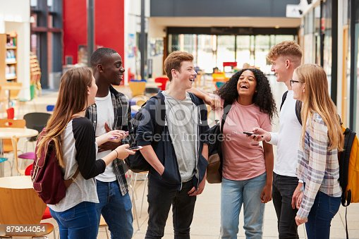 istock Student Group Socializing In Communal Area Of Busy College 879044054