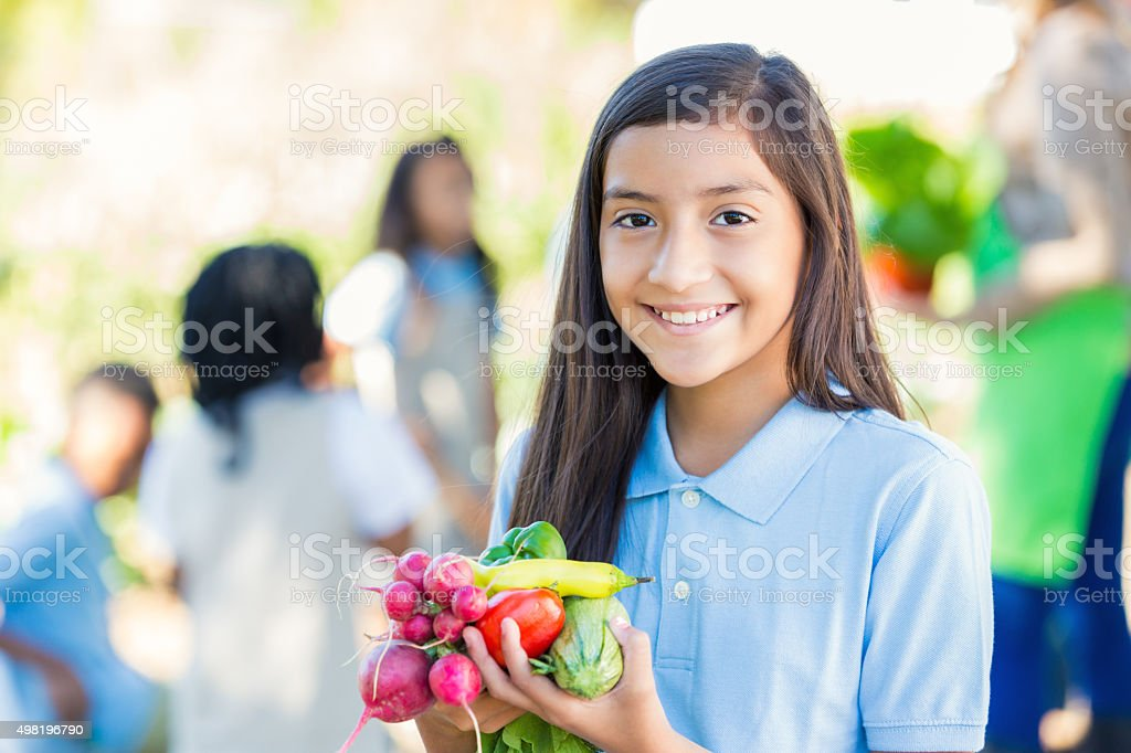 Student holding vegetables she picked from garden during field trip stock photo