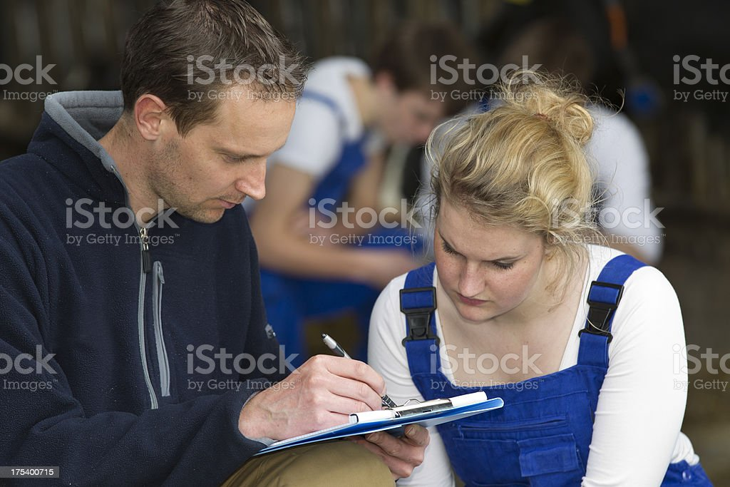 Student learn about cows from an experienced instructor. stock photo