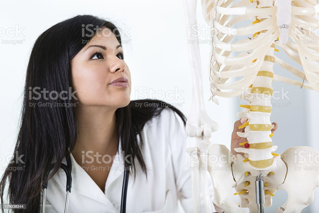 Student looking at human skeleton royalty-free stock photo