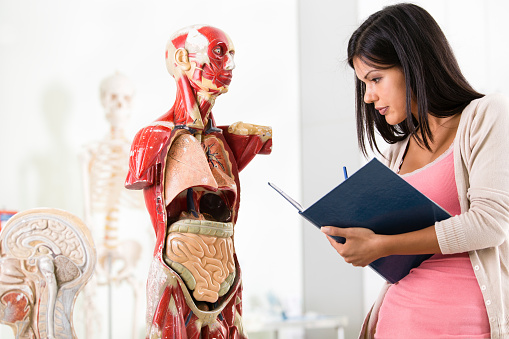 Medical student on anatomy class.