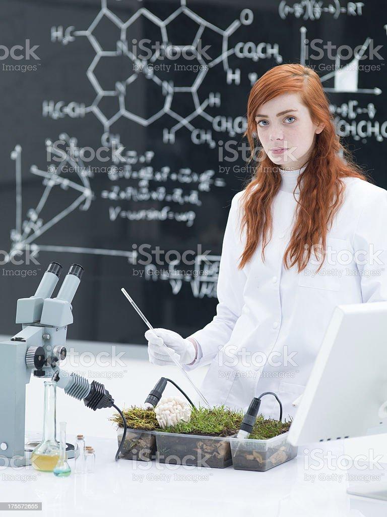 student plant analysys royalty-free stock photo