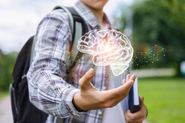 Student shows the brain . stock photo
