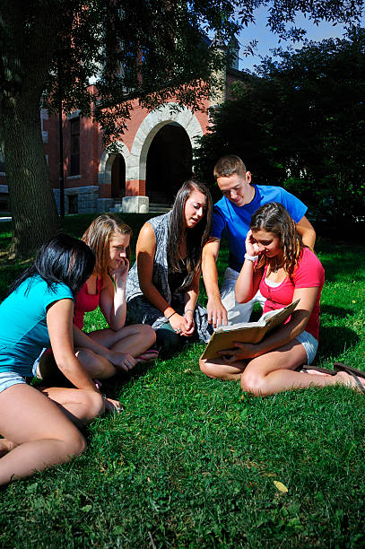 Student Study Group Outdoors on a Nice Day stock photo