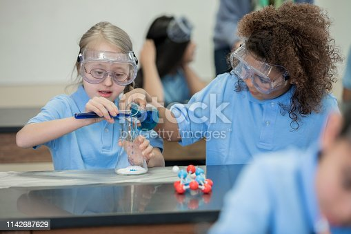 istock Student with Down Syndrome does chemistry experiment with classmate in private school 1142687629