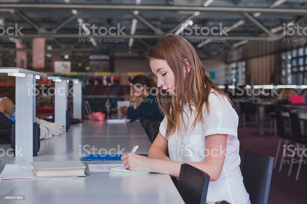 student working in the library stock photo
