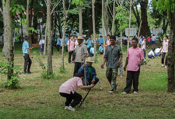 Students and people are planting trees stock photo