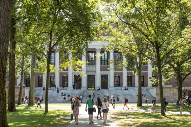 students and tourists rest in lawn chairs in harvard yard, the open old heart of harvard university campus - university stock pictures, royalty-free photos & images