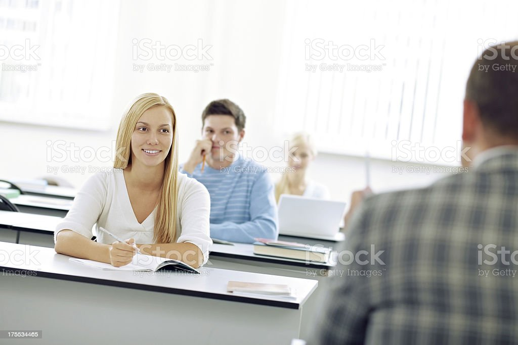Students at lesson royalty-free stock photo