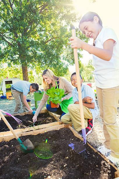 alunos a desfrutar do campo de viagem na exploração, plantação produtos hortícolas no jardim - teacher school solo imagens e fotografias de stock
