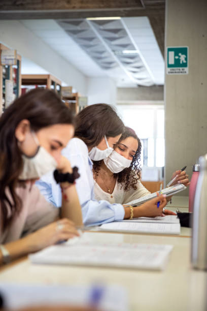 Students focused on the study in a public library stock photo