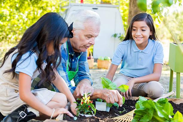 alunos a aprendizagem de jardinagem do agricultor no campo viagem - teacher school solo imagens e fotografias de stock