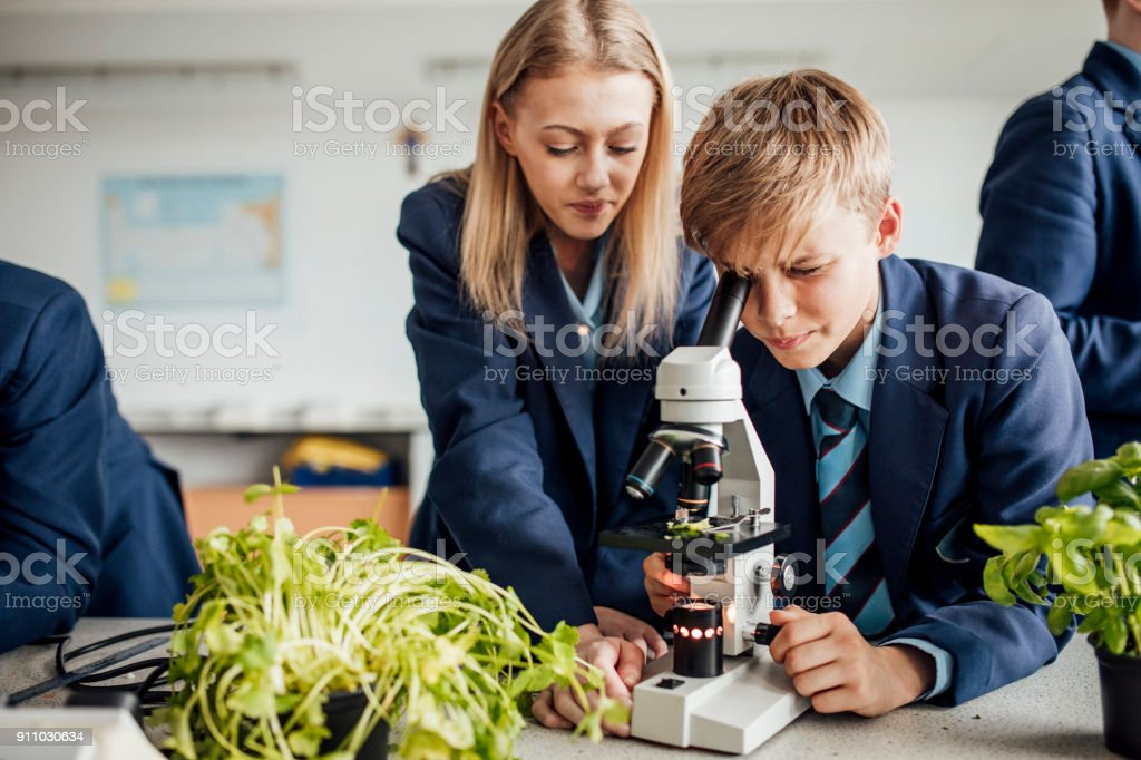 Students Looking Down Microscope stock photo