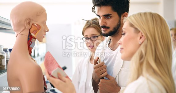 istock Students of medicine examining anatomical model in classroom 973725692