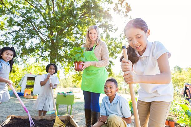 alunos plantação de produtos hortícolas na escola jardim durante aula de ciências - teacher school solo imagens e fotografias de stock