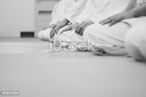 istock students sitting in a kimono in the gym 873512004