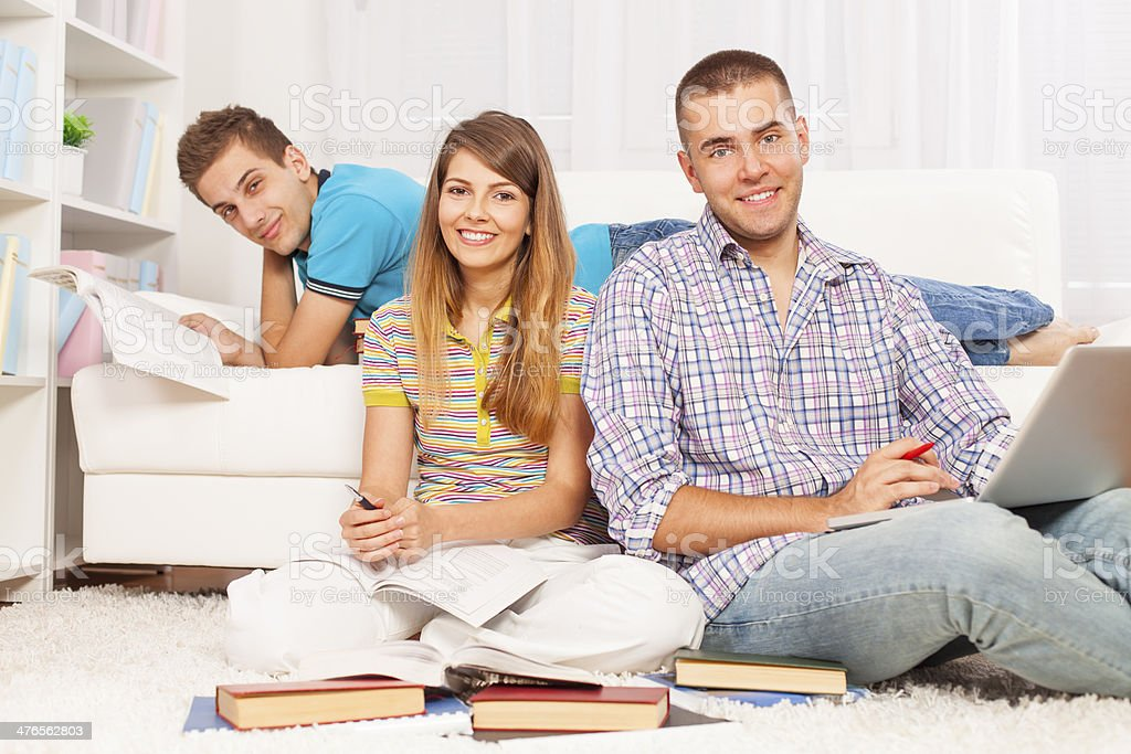 Students studying at home royalty-free stock photo