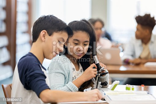 istock Students work together on science assignment 1138904412