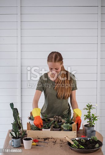Woman taking care of her cactus plants during a weekend