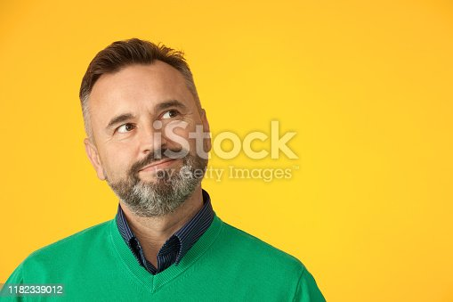 Studio portrait of a 50 year old bearded man in a green sweater on a yellow background