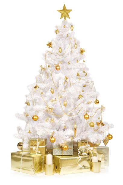 Studioaufnahme eines Weihnachtsbaumes – Foto
