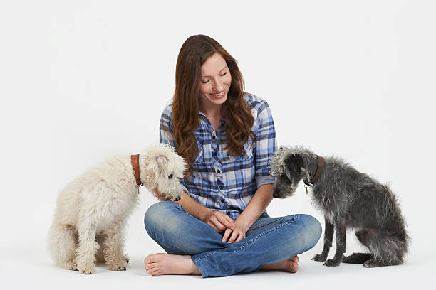 Studio shot of woman with two pet lurcher dogs picture id482230874?b=1&k=6&m=482230874&s=612x612&w=0&h=rstffslgjzi5gxwshyo4pqelcccwq4goq9rrb8gsg7y=