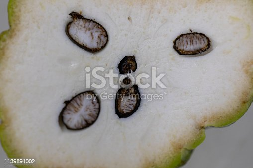 848267780istockphoto Study of flowering and fruit structures for education in laboratory. 1139891002