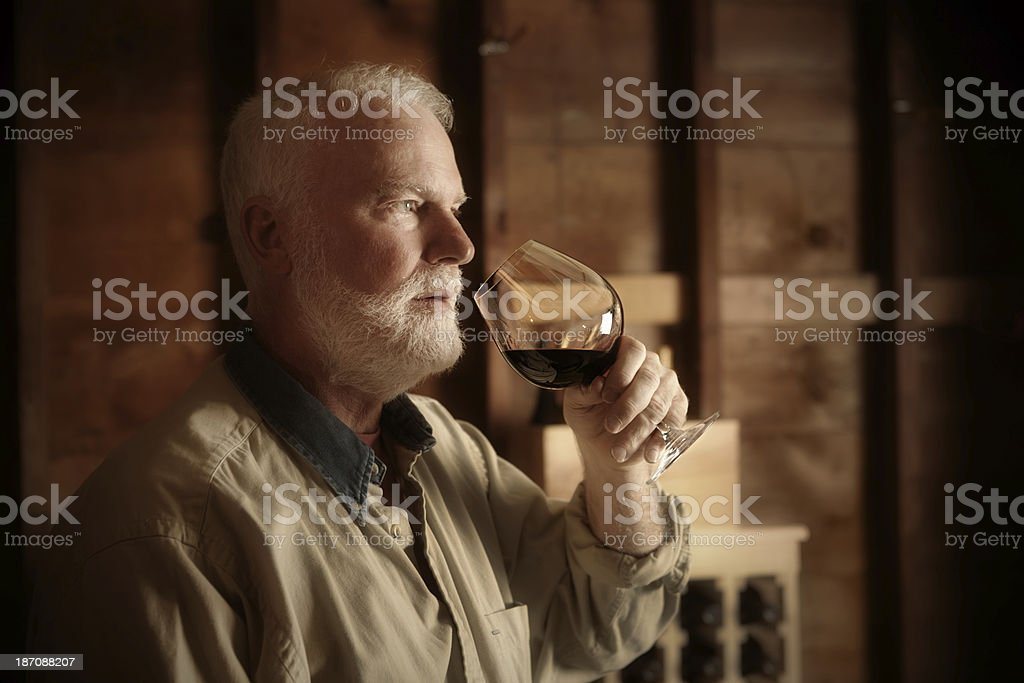 Studying and Tasting Wine in Cellar Horizontal royalty-free stock photo