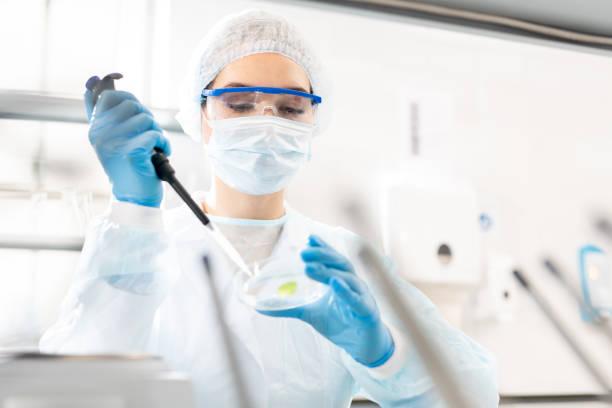 studeren microbiologische sample - laboratoriumapparatuur stockfoto's en -beelden