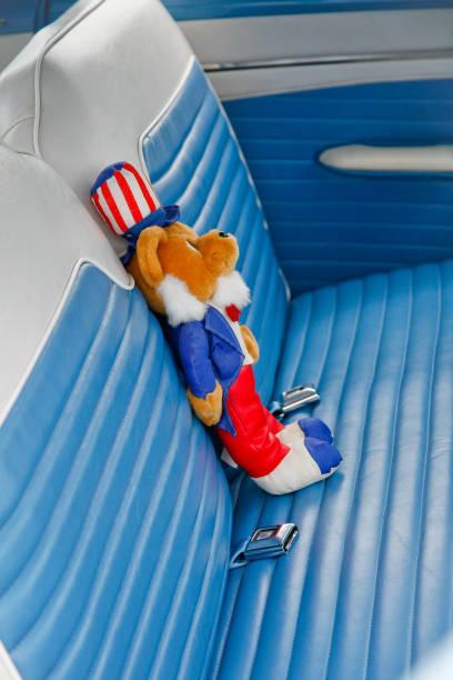 Stuffed animal in back seat of old car stock photo