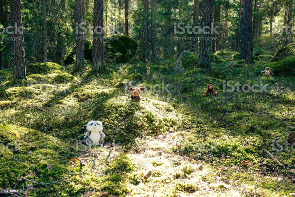 A stuffed owl, moose, bear and raccoon in a green cozy forest at...