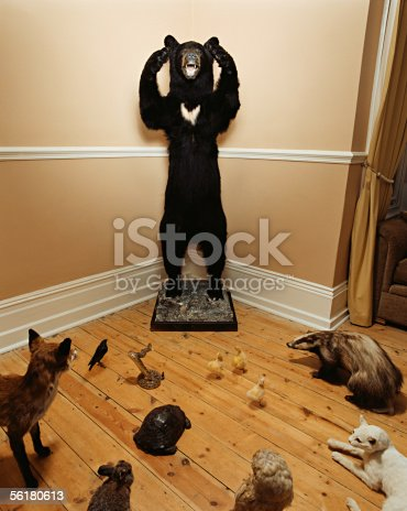 istock Stuffed bear surrounded by other stuffed animals 56180613