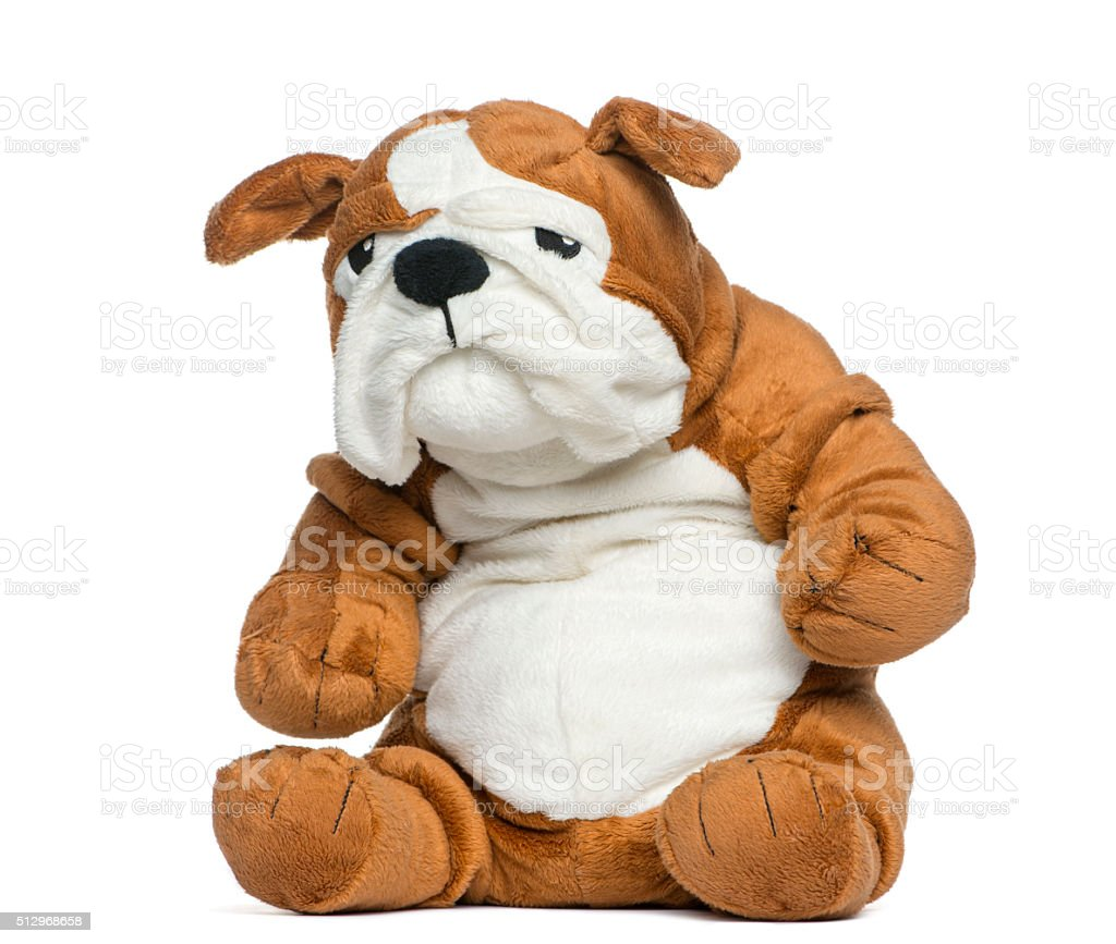 Stuffed English bulldog toy in front of white background stock photo