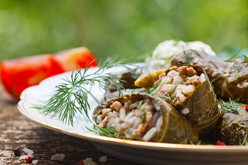 Stuffed Grape Leaves Stock Photo - Download Image Now