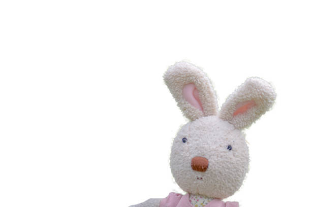 Stuffed rabbit isolated on white background picture id984173176?b=1&k=6&m=984173176&s=612x612&w=0&h=sdu3tdh2yyza0h3lk6pzqhcpurzhfykq4e8lrd3iwio=