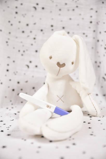 conejo de peluche con predictor sobre el fondo estrella. Nuevos padres. prueba de embarazo. - foto de stock