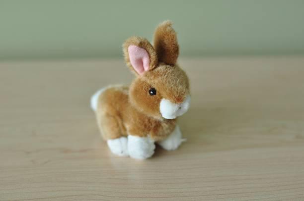 Ausgestopfter Spielzeug bunny – Foto