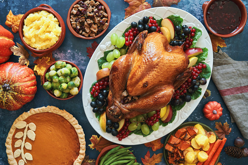 Stuffed Turkey for Thanksgiving Holidays