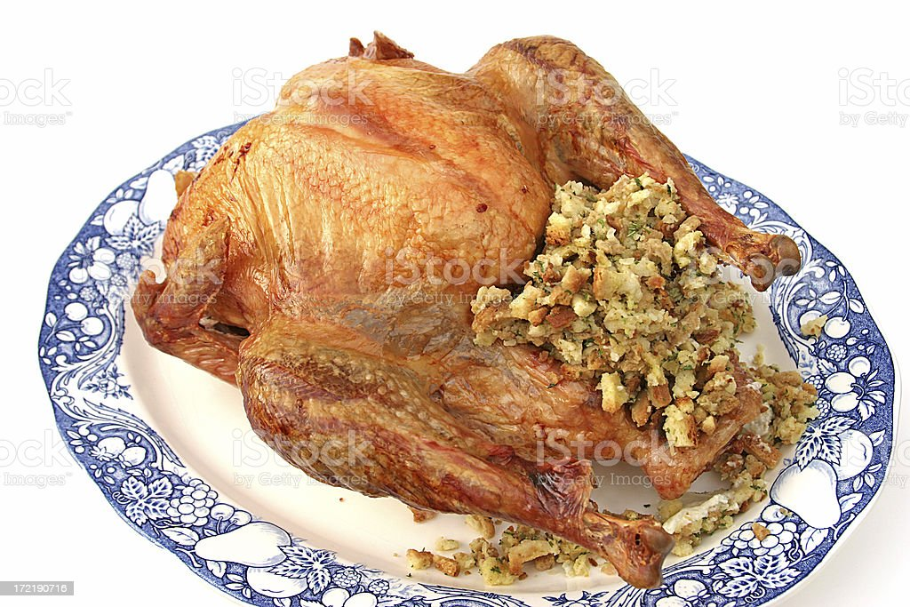 Stuffed Turkey Isolated royalty-free stock photo