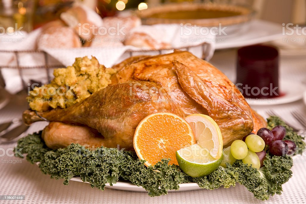 Stuffed Turkey stock photo
