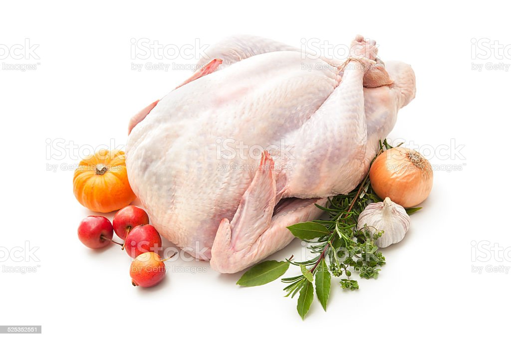 Stuffed turkey stock photo