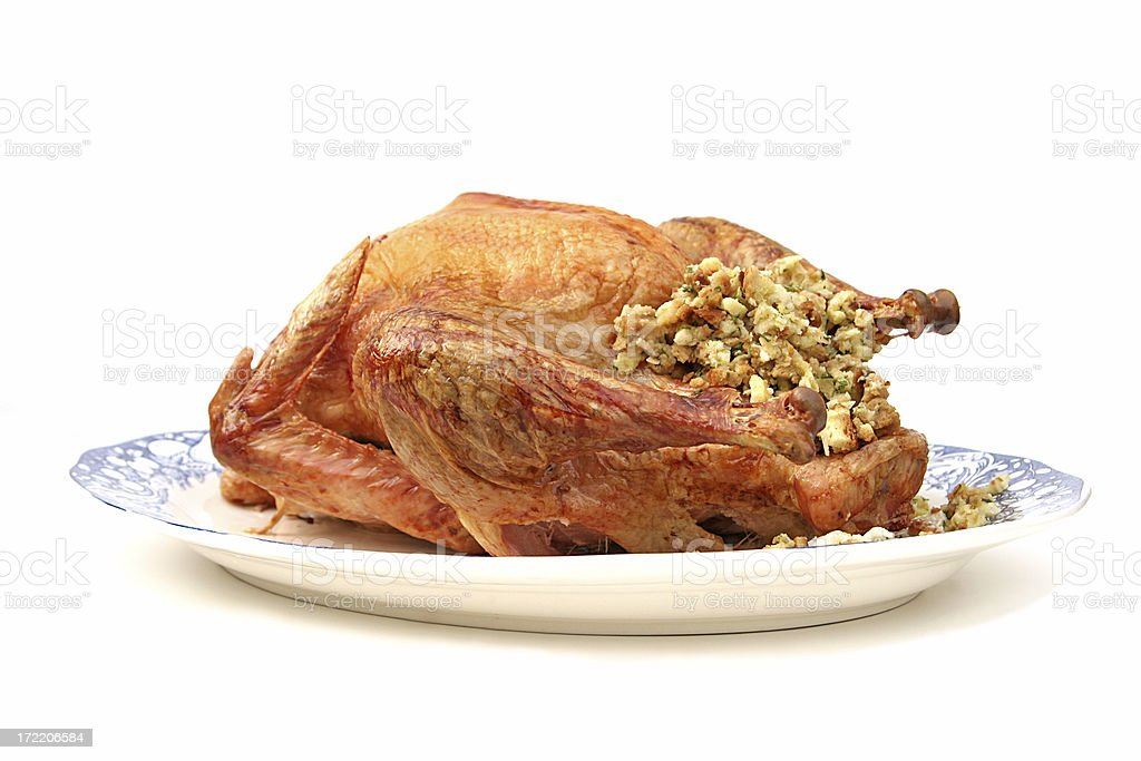 Stuffed Turkey Side View Isolated stock photo