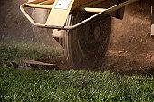 stump grinder (tree removal series)
