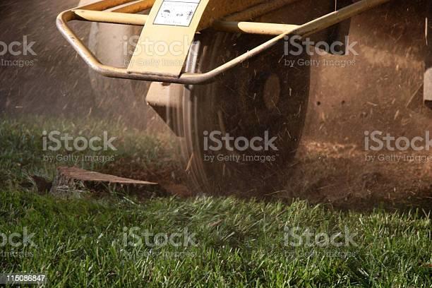 Stump Grinder Stockfoto en meer beelden van Afdalen